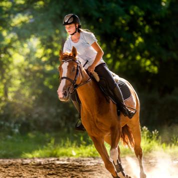 Infini Pass 100% Équitation
