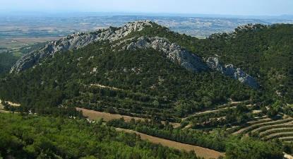 Vol en ULM Autogire à Avignon - Survol des vignobles de Provence