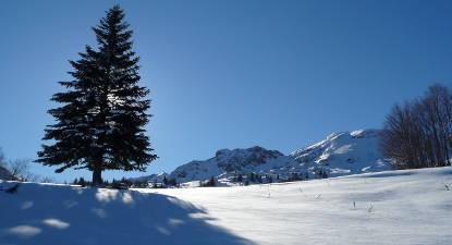 Randonnée en raquettes Romantique dans l'Ariège