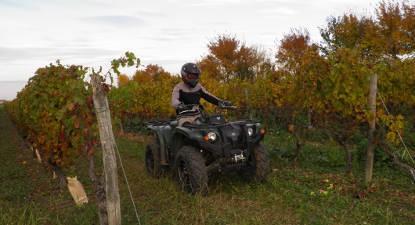 Randonnée en Quad près de Saumur