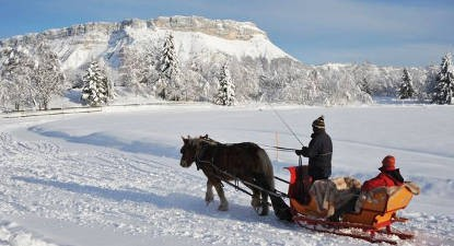 Promenade en traîneau à cheval près de Chambéry