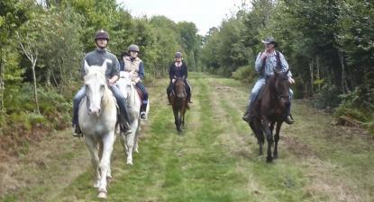 Stage d'équitation près de Rouen