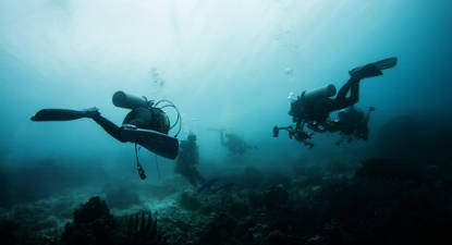 Initiation et formation à la plongée en Bretagne près de Belle île