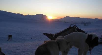 Stage de survie 3 jours façon Musher et chien de traîneau dans le Jura