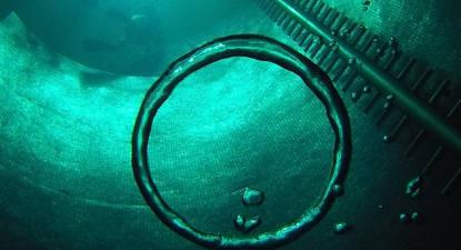 Formation plongée niveau 1 près de Paris à Argenteuil