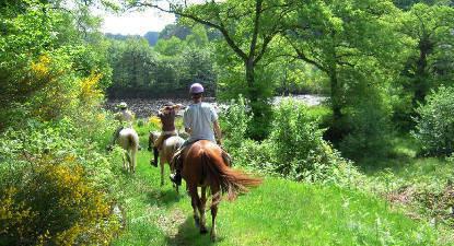 Balade à Cheval près de Limoges