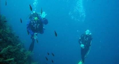 Plongée sous marine à Fréjus