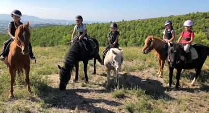 Randonnée équestre à cheval ou à poney à Marseille