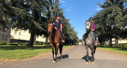 Balade à cheval ou en calèche près de Saumur