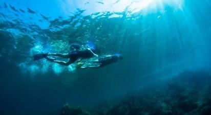 Snorkeling et balade en bateau depuis Nice