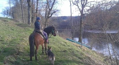 Balade à cheval à Saint Clément dans l'Allier