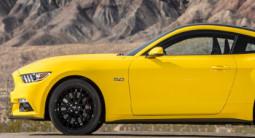 Pilotage en Mustang GT - Circuit Paul Ricard Driving Center