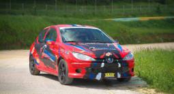 Stage de Pilotage en Peugeot 206 F2000 - Circuit des Ducs