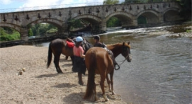 Balade à Cheval dans le Cher près de Bourges