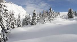 Stage de Survie Hivernal près d'Annecy