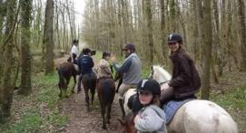 Balade à cheval près de Chalon sur Saône