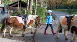 Cours d'Equitation près d'Agen
