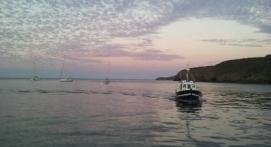 Balade en bateau en Bretagne à la découverte de Belle Île