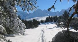 petite-journée raquettes Pyrénées