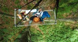 Grimpe d'Arbres goûter ou apéro Thonon-les-Bains