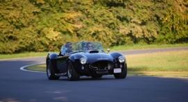 Stage de Pilotage en AC Cobra - Circuit de Mornay