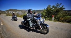 Découverte de la Région Cannoise en Harley-Davidson