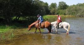 Balade à Cheval près de Poitiers