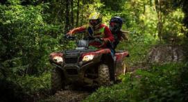 Balade en quad en Auvergne près de Vichy