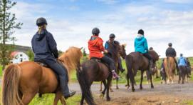 Cours et stage d'équitation à Marseille