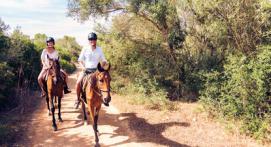 Randonnée libre à Cheval pour Ado ou Adultes près d'Aix-en-Provence