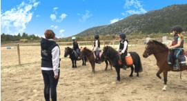 Cours d'équitation près de Marseille