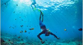 Snorkeling à Villefranche sur Mer