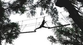 Parcours accrobranche Millau