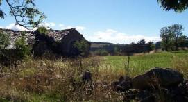 Course d'orientation dans le Parc National des Cévennes