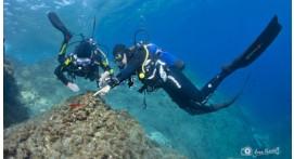 Stage de plongée enfant en Méditerranée à Cerbère près de Perpignan
