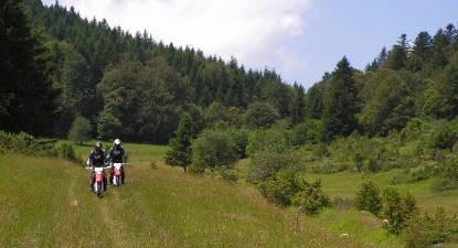 Randonnée en Moto sur la Route des Sapins près de Toulouse