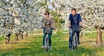 Location Vélo Electrique à St-Rémy-de-Provence