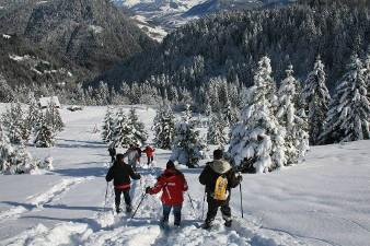 Stage de survie en milieu montagnard enneigé