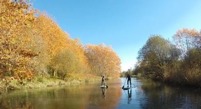 Cours de paddle en rivière à Bayonne