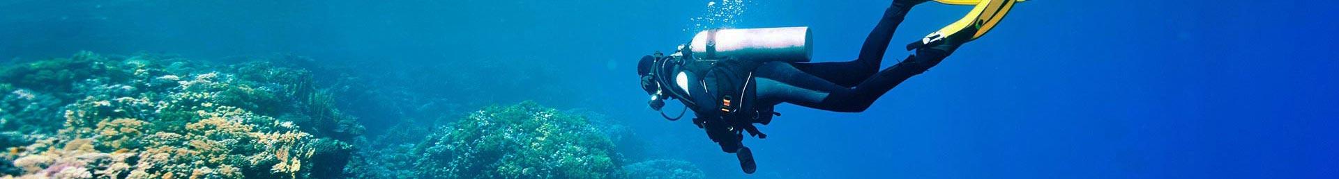 Formation à la plongée